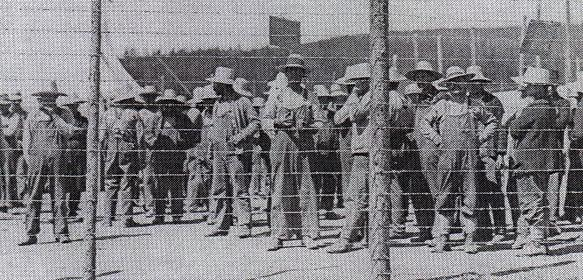 photo of prisoners of the petawawa internment camp