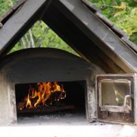 Wood Fired Oven all fired up